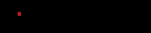 NETIMAGE logo